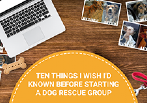 Ten Things I Wish I'd Known Before Getting Into Rescue